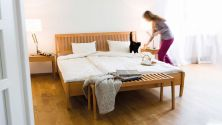 Bed zebra - the peace of the forest in the bedroom|bed frame zebra with headboard